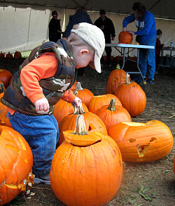 Pumpkinfest Port Elgin