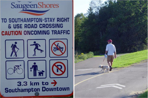 saugeen shores multi use trail