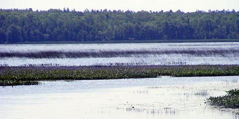 spry lake boat lake